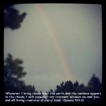 RainbowQuote